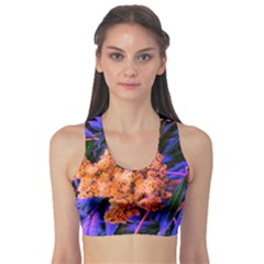 Blue And Gold Sideways Sumac Sports Bra