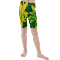 Yellow Sumac Bloom Kids  Mid Length Swim Shorts
