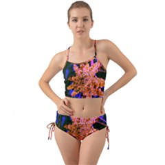 Yellow, Pink, And Blue Sumac Bloom Mini Tank Bikini Set