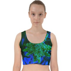 Blue And Green Sumac Bloom Velvet Racer Back Crop Top
