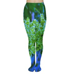 Lime Green Sumac Bloom Tights