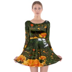 Orange Rose Field Long Sleeve Skater Dress