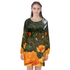 Orange Rose Field Long Sleeve Chiffon Shift Dress