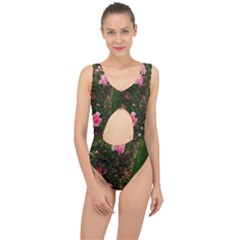 Pink Rose Field (sideways) Center Cut Out Swimsuit