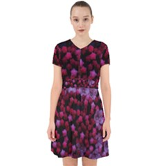 Floral Stars  Purple Adorable In Chiffon Dress