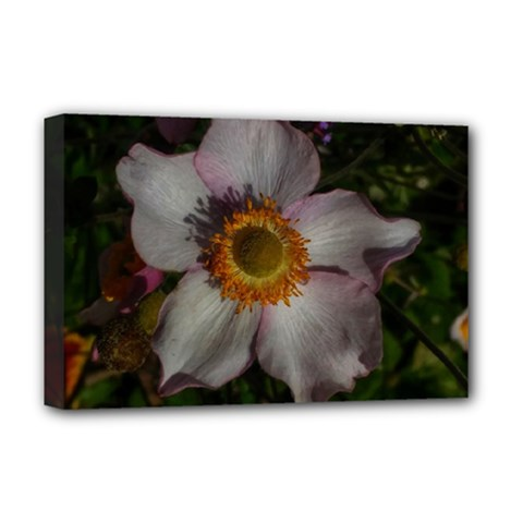 Light Purple Blossoms Deluxe Canvas 18  X 12  (stretched)