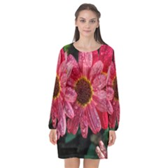 Three Dripping Flowers Long Sleeve Chiffon Shift Dress