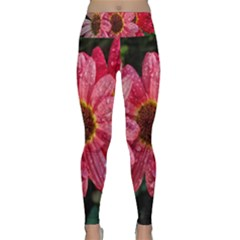 Three Dripping Flowers Lightweight Velour Classic Yoga Leggings