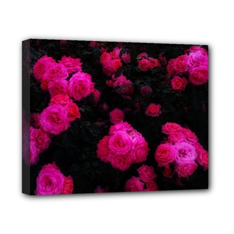Bunches Of Roses Canvas 10  X 8  (stretched)