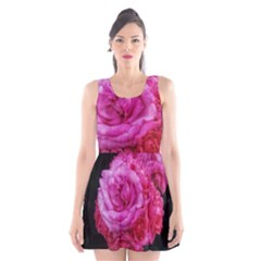 Bunches Of Roses (close Up) Scoop Neck Skater Dress