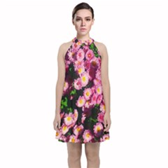 Pink Flower Bushes Velvet Halter Neckline Dress