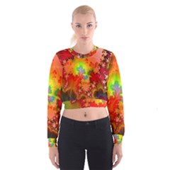 Background Abstract Color Form Cropped Sweatshirt