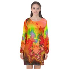 Background Abstract Color Form Long Sleeve Chiffon Shift Dress