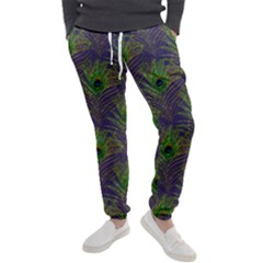 Peacock Glitter Feather Pattern Men s Jogger Sweatpants by tarastyle