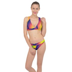 Background Rainbow Colors Colorful Classic Banded Bikini Set