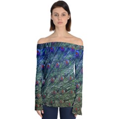Peacock Feathers Colorful Feather Off Shoulder Long Sleeve Top by Pakrebo