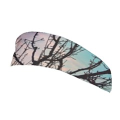 Fruit Tree Silhouette Aesthetic Stretchable Headband