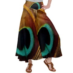Feather Peacock Feather Peacock Satin Palazzo Pants by Nexatart