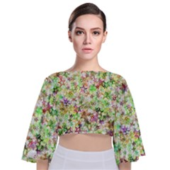 Background Christmas Star Advent Tie Back Butterfly Sleeve Chiffon Top