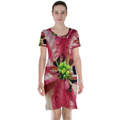 Christmas Poinsettia Deco Jewellery Short Sleeve Nightdress