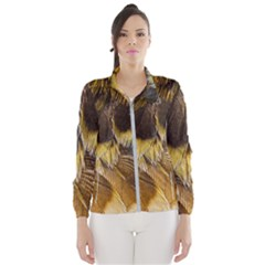 Wing Feather Bird Animal World Women s Windbreaker by Pakrebo