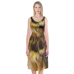 Wing Feather Bird Animal World Midi Sleeveless Dress by Pakrebo