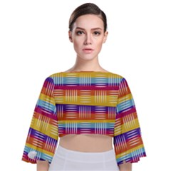 Background Line Rainbow Tie Back Butterfly Sleeve Chiffon Top
