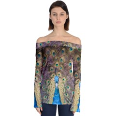 Bird Peacock Feather Off Shoulder Long Sleeve Top by HermanTelo