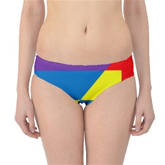 Colorful Red Yellow Blue Purple Hipster Bikini Bottoms