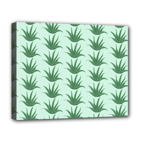 Aloe Plants Pattern Scrapbook Deluxe Canvas 20  X 16  (stretched) by Bajindul