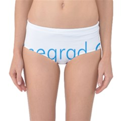 Logo Of Visegrád Group Mid-waist Bikini Bottoms by abbeyz71