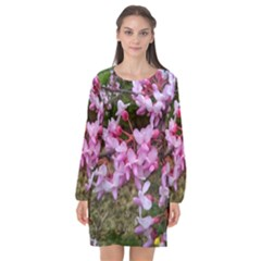 Redbud In April Long Sleeve Chiffon Shift Dress