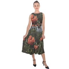 Faded Poppy Field  Midi Tie-back Chiffon Dress