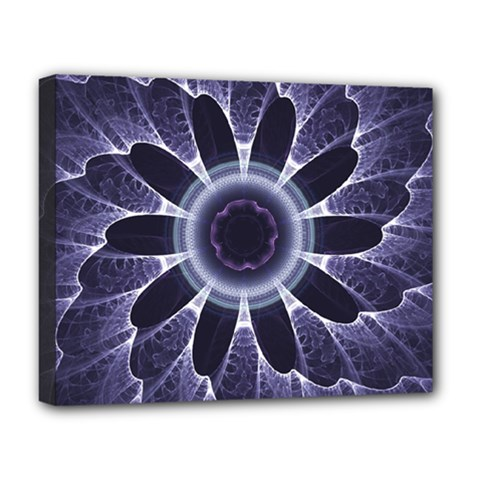 Fractal Feathers Blue Purple Deluxe Canvas 20  X 16  (stretched) by Pakrebo