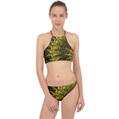 Rich Yellow Digital Abstract Racer Front Bikini Set