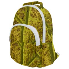Leaf Structure Texture Background Rounded Multi Pocket Backpack