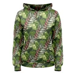 Leaves Seamless Pattern Design Women s Pullover Hoodie by Pakrebo