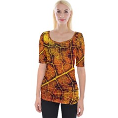 Autumn Leaves Forest Fall Color Wide Neckline Tee