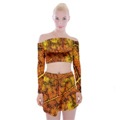 Autumn Leaves Forest Fall Color Off Shoulder Top With Mini Skirt Set