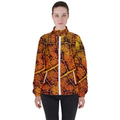 Autumn Leaves Forest Fall Color Women s High Neck Windbreaker