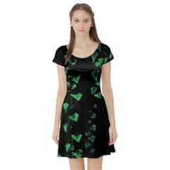 Botanical Dark Print Short Sleeve Skater Dress by dflcprintsclothing