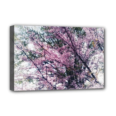 Ohio Redbud Deluxe Canvas 18  X 12  (stretched) by Riverwoman