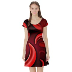 Cells All Over  Short Sleeve Skater Dress by shawnstestimony