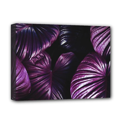 Purple Leaves Deluxe Canvas 16  X 12  (stretched)