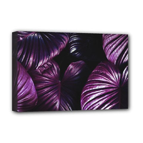 Purple Leaves Deluxe Canvas 18  X 12  (stretched) by Pakrebo