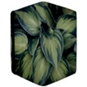 Closeup Photo Of Green Variegated Leaf Plants iPad Air 2 Flip View3