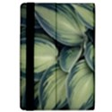 Closeup Photo Of Green Variegated Leaf Plants iPad Air 2 Flip View4