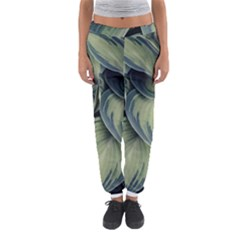 Closeup Photo Of Green Variegated Leaf Plants Women s Jogger Sweatpants