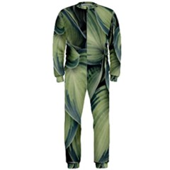 Closeup Photo Of Green Variegated Leaf Plants Onepiece Jumpsuit (men)