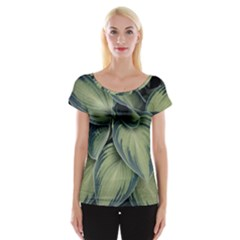 Closeup Photo Of Green Variegated Leaf Plants Cap Sleeve Top by Pakrebo